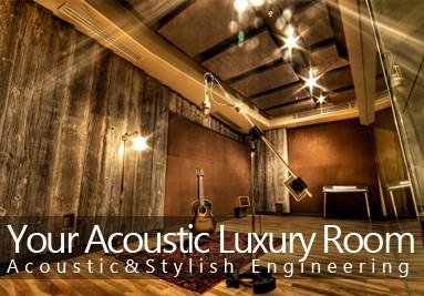 luxury acoustic room